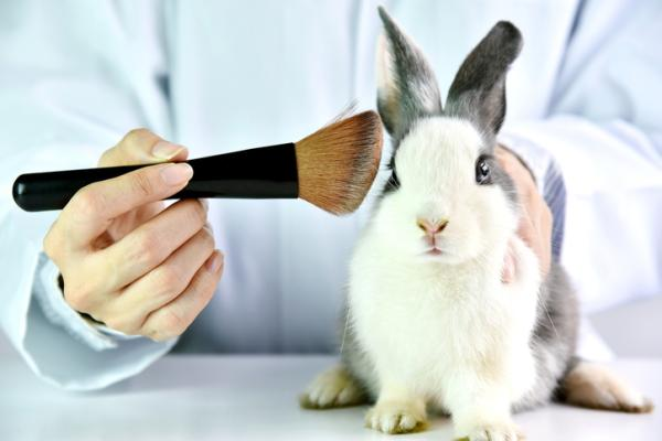 Cómo saber si un producto está testado en animales