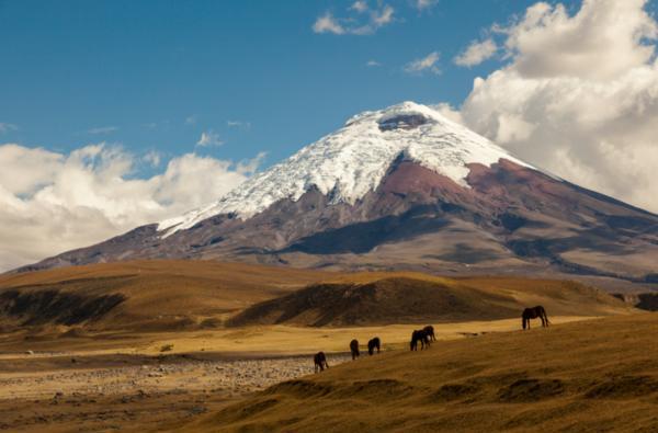 Cuáles son las regiones naturales del Ecuador - La Sierra (cordillera andina)