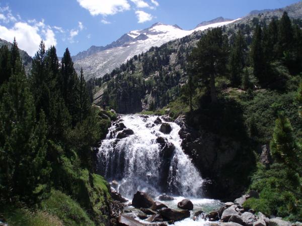 Major aquatic and terrestrial ecosystems of Spain - The main aquatic and terrestrial ecosystems that exist in Spain