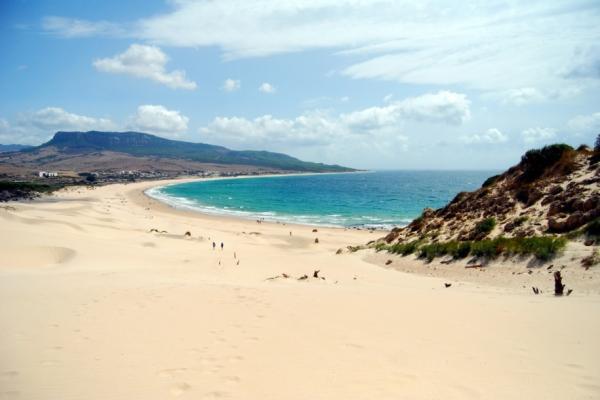 Principales ecosistemas acuáticos y terrestres de España