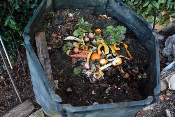 Qué son los fertilizantes y sus tipos - Cómo hacer fertilizantes caseros para las plantas