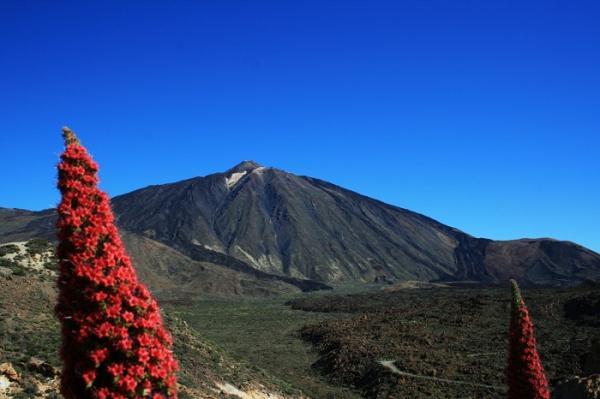 Qué es patrimonio natural y ejemplos - Ejemplos de patrimonio natural en España