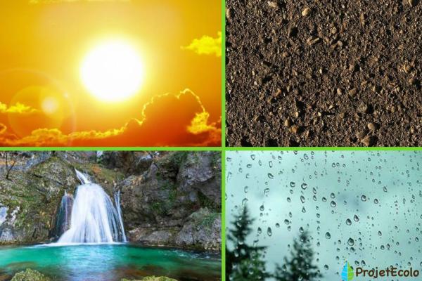 Facteurs abiotiques : Définition, caractéristiques et exemples - Exemples de facteurs abiotiques