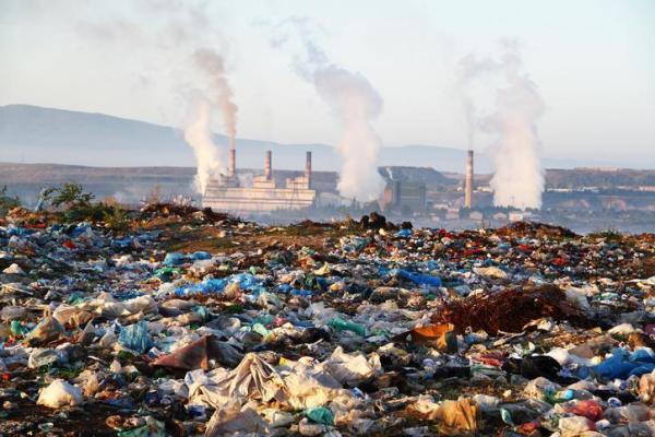 Solutions à la pollution des sols