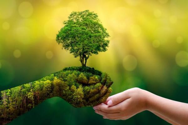 Comment préserver l'environnement - Action de l'homme sur la biodiversité - Protection de la biodiversité