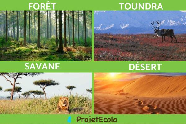 Région naturelle : Définition et caractéristiques - Quelles sont les régions naturelles - exemples