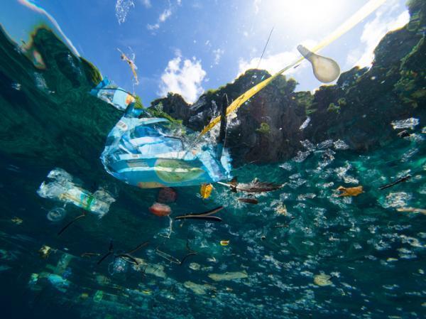 Plastique dans la mer : causes, conséquences et solutions - Causes des plastiques dans la mer