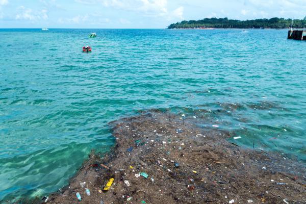 Plastique dans la mer : causes, conséquences et solutions - Types de plastiques dans la mer