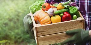 Alimentation durable : Définition et comment l'avoir