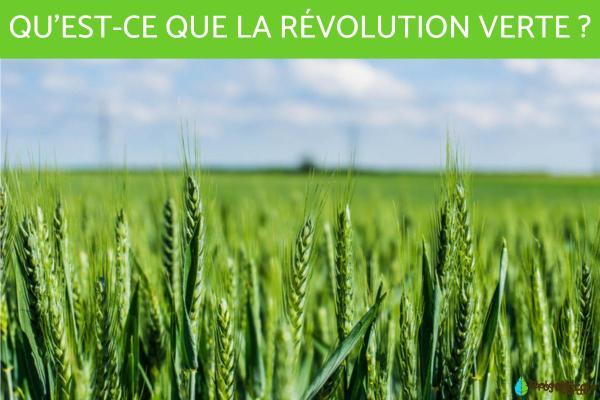 La révolution verte - Définition, avantages et inconvénients