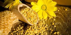 Qu'est-ce que le pollen et à quoi sert-il ?