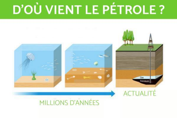 Comment se forme le pétrole - Comment se forme le pétrole ?