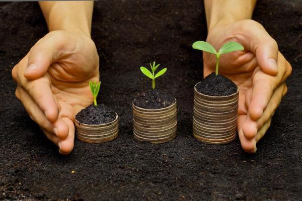 Capital naturel - Définition et exemples - Qu'est-ce que la capital naturel d'un pays