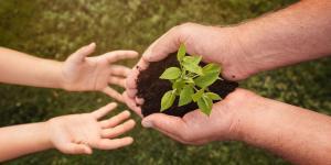 Conscience écologique - Définition et importance