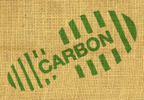 Indicateurs environnementaux : Définition, types et exemples - Empreinte carbone