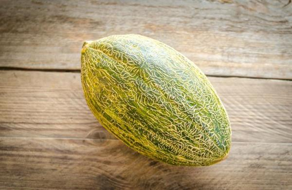8 types de melons - Melon d'hiver ou melon à peau de crapaud