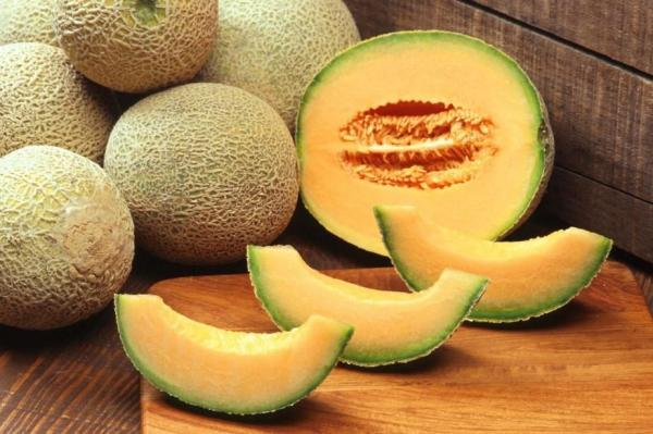 8 types de melons - Melon Galia