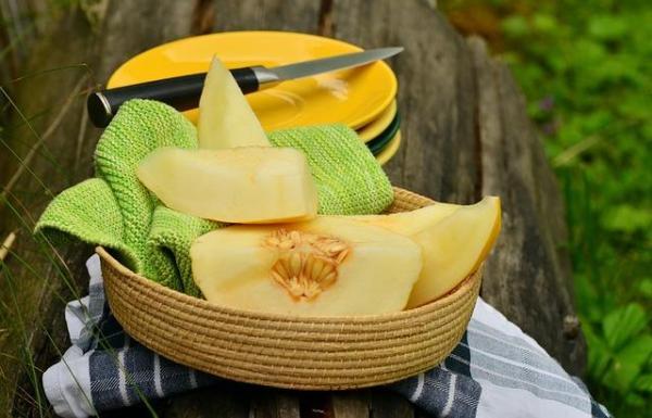 8 types de melons - Melon jaune