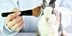Produits non testés sur les animaux - Savoir si une marque est cruelty free