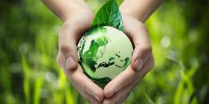 Quelle est l'importance de l'environnement ?
